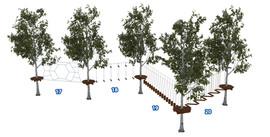 Веревочный парк на деревьях D2-16 5