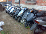Скутеры оптом и в розницу Honda/Yamaha/Suzuki