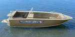 Купить лодку (катер) Wyatboat-430 C al
