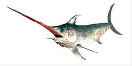 Свежемороженная рыба, макрель, лангустины и креветки из Южной Ам 3