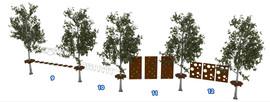 Веревочный парк на деревьях D2-16 3