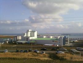 земельный участок в Черноморском торговом порту 6
