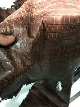 Продажа кожи крокодила, для пошива одежды, обуви и аксессуаров! 5