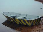 Купить лодку Афалина 305