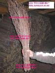 Метла березовая высокого качества для уборки от 8 руб/шт