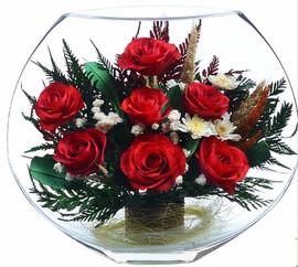 Розы в вакууме в плоской вазе 2
