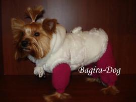 вязаная одежда для собак и кошек Bagira Dog купить одежда в москва