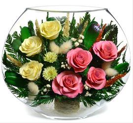 Розы в вакууме в плоской вазе 4