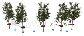 Веревочный парк на деревьях D2-16 6