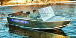 Купить лодку (катер) Wyatboat-430 Pro al