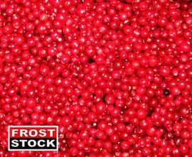 Замороженные ягоды. Брусника