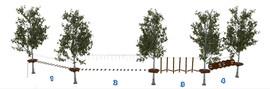 Веревочный парк на деревьях D2-16