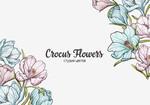 Студия цветов CROCUS FLOWERS
