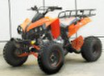 Гонки ATV (ATV-008)