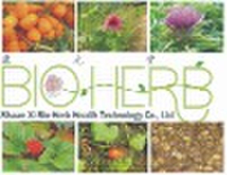 Organic Herbs & Mushrooms