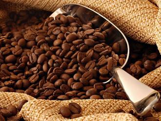 Кофе оптом Арабика зерновой качество А и АВ
