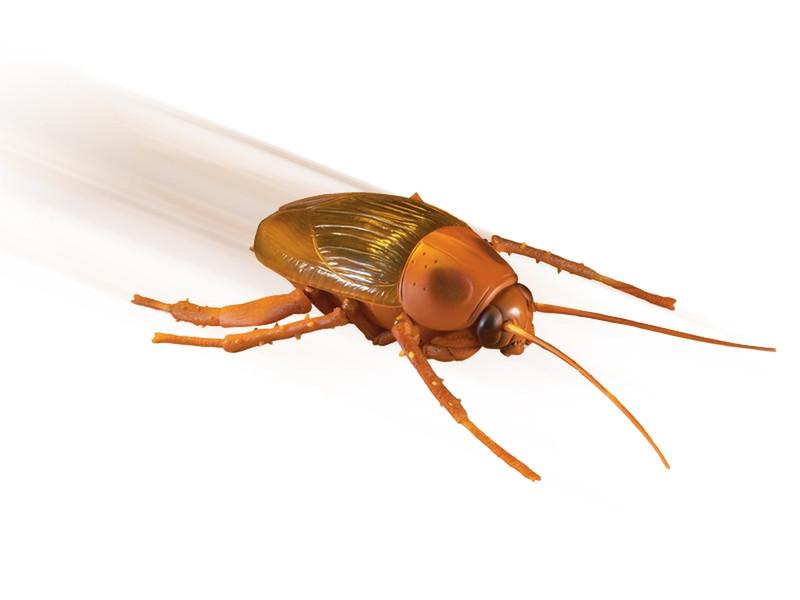 Uncle Milton Remote Control Roach