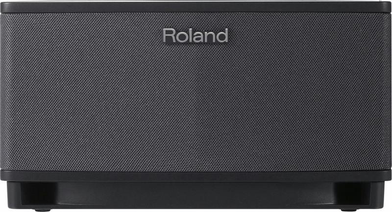 Roland CUBE Lite 2.1 Черный усилитель звуковой частоты